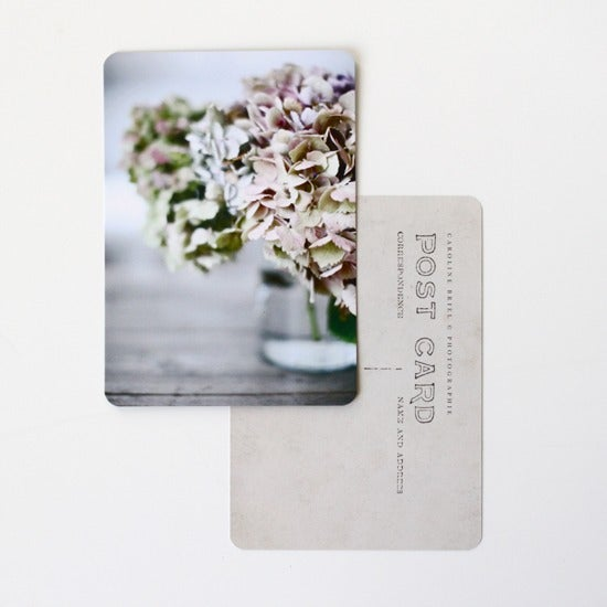 "Image of Carte postale ""Hortensias"""