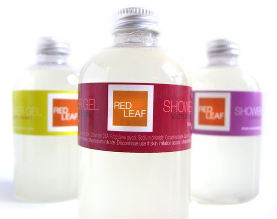 Image of Red Leaf Vegan Aloe Vera Body Wash Shower Gel Free Shipping