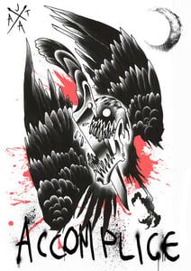 Image of Skull Bird Poster