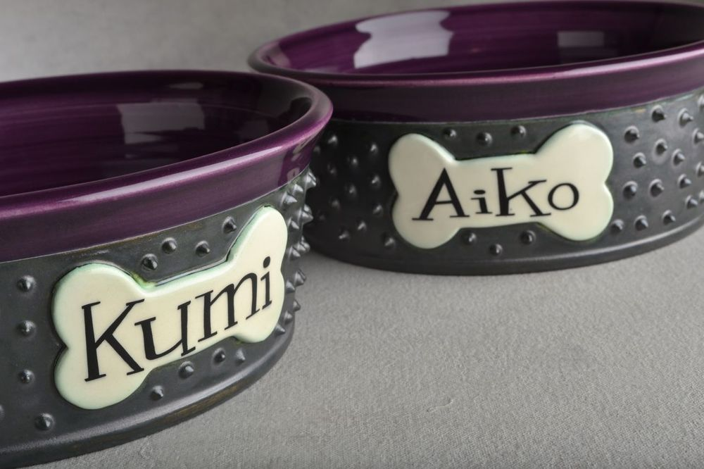 Image of Personalized Spiky Dog Bowl Set