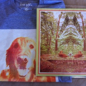 Image of Gracie - Treehouse LP + T-Shirt + Digital Download Bundle