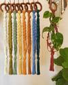 Chex Mini Plant Hanger