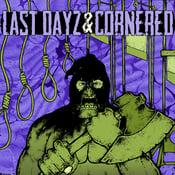 """Image of Cornered / Last Dayz - Split 7"""" EP"""