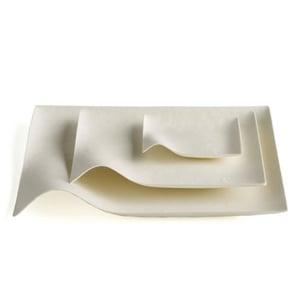 Image of Wasara Kaku plates - stylish disposable tableware