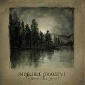 Image of Joy Beyond The Sorrow: Indelible Grace VI