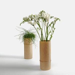 Image of Setting 001 (bamboo vase)
