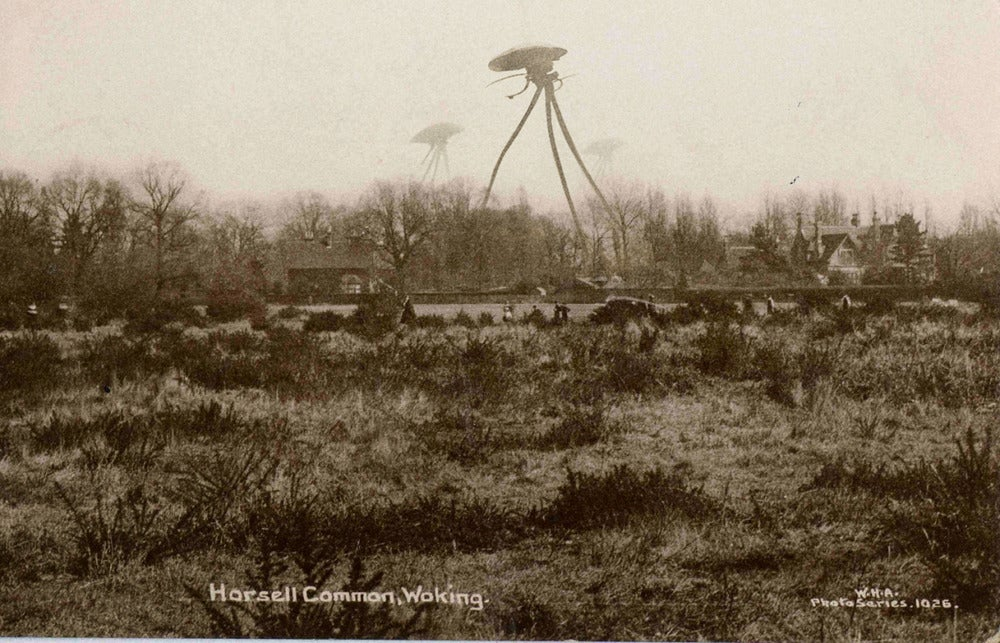 horsell_common_1.jpg?auto=format&fit=max