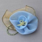 Image of T20 Sky Blue Rose