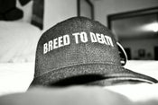 Image of Breed To Death Baseball Hat (Front & Back)