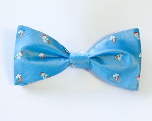 Image of Rainbowtie Dash
