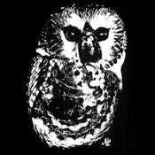 Image of Owl Tee