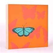 Image of Tangerine with Butterflies 7 x 7
