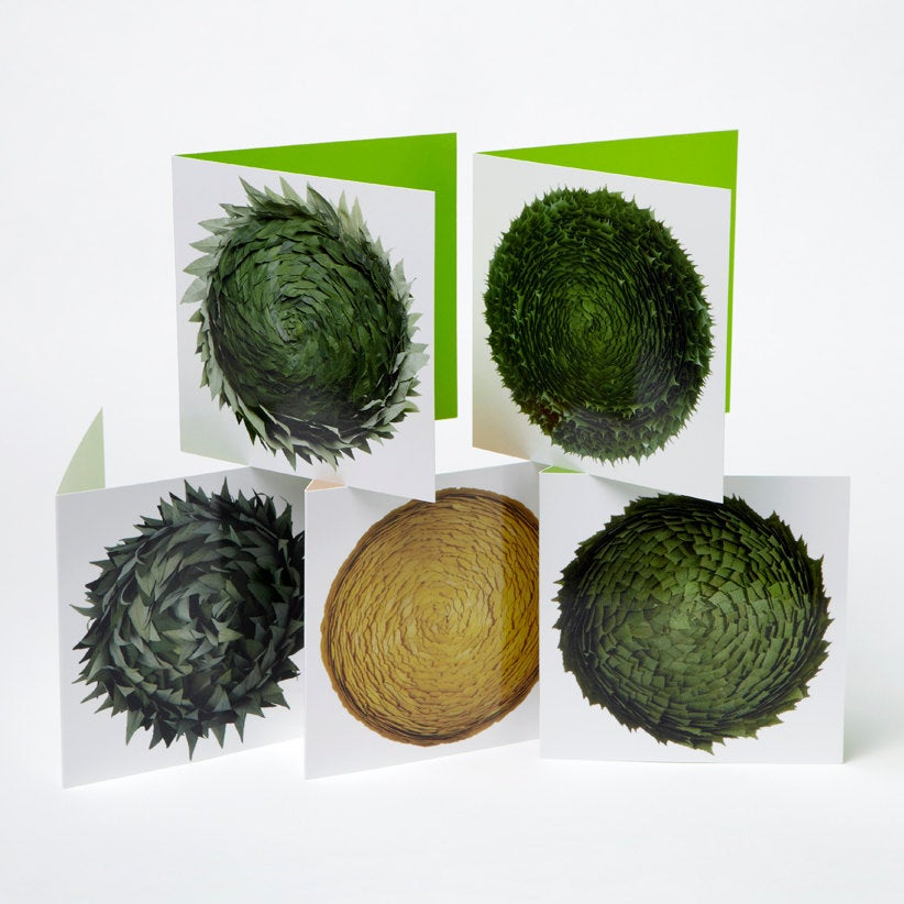 Image of Set of 5 greeting cards