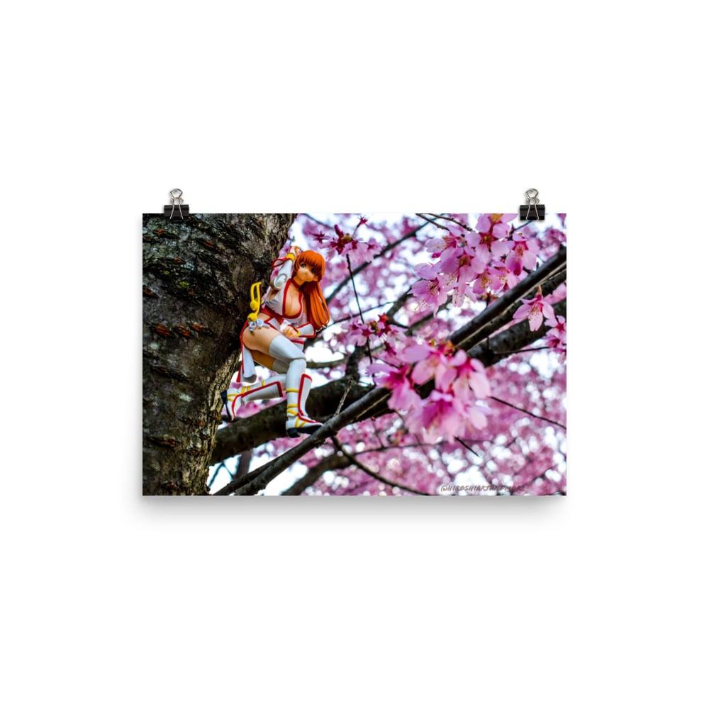 Kasumi x Cherry Blossoms (full)