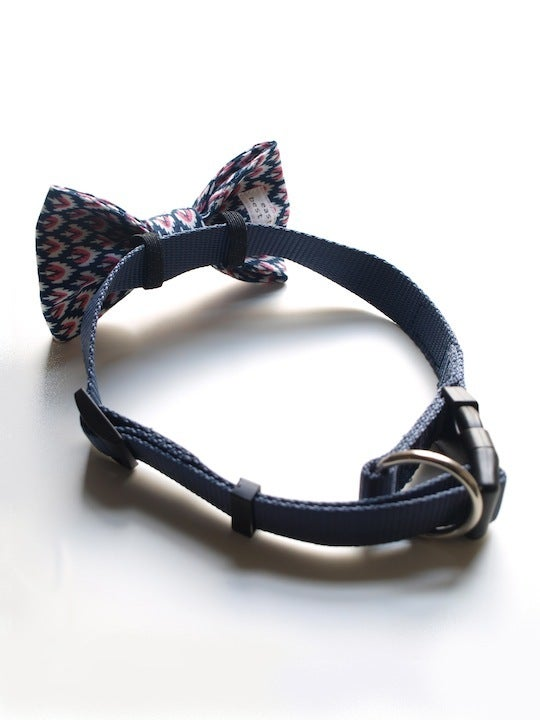 Image of dog bow tie ikat