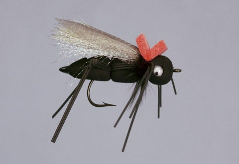 Eastern Trophies Fly Fishing Ultimate Mormon Cricket
