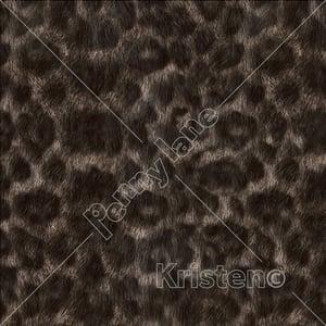Image of Panthera Noir