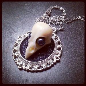 Image of Sophie Adamson art and accessories-replica bird skull
