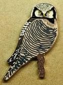 Hawk Owl - August 2021 - Bird Pin Group - Enamel Pin Badge