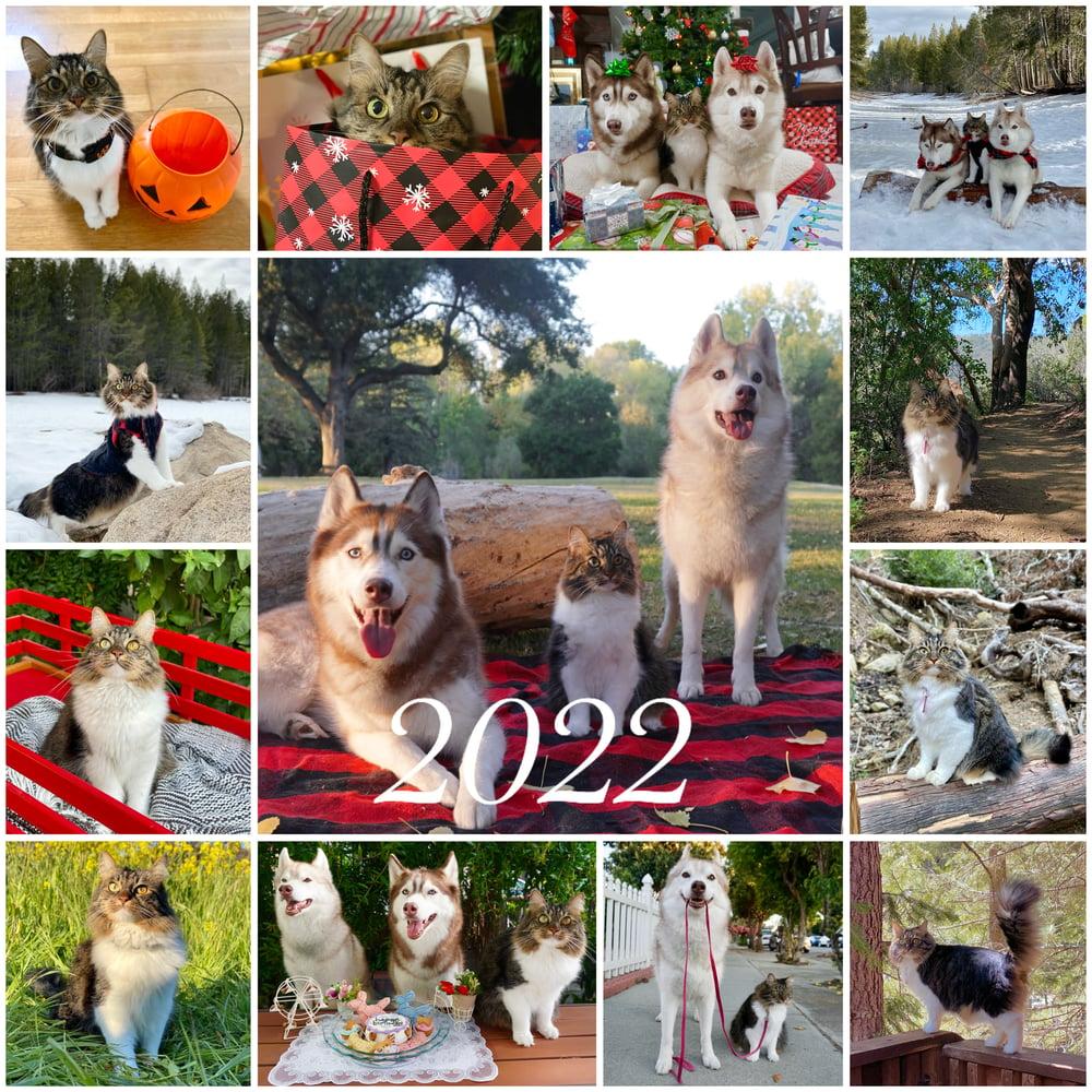 Image of Pre-Order 2022 Pack Calendar