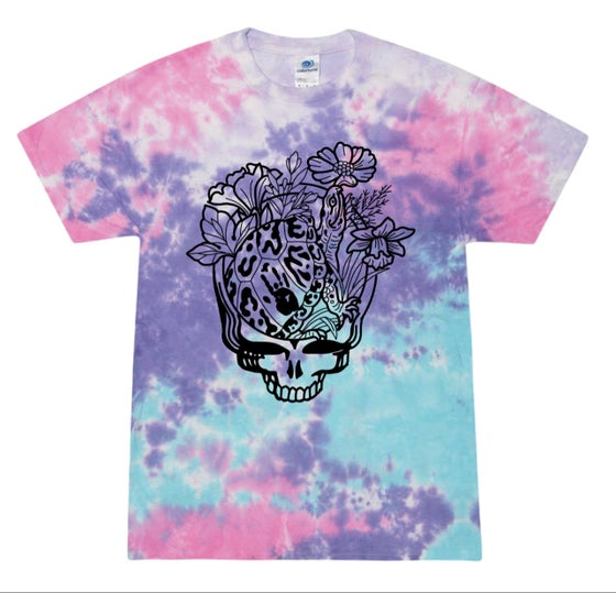 Image of Cotton Candy terrapin SYF