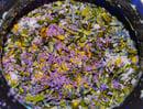 Image 2 of sparkly fizzy vegan bath mylks (4oz plastic container)