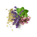 Image 1 of Herb Bunch Bubble-free stickers