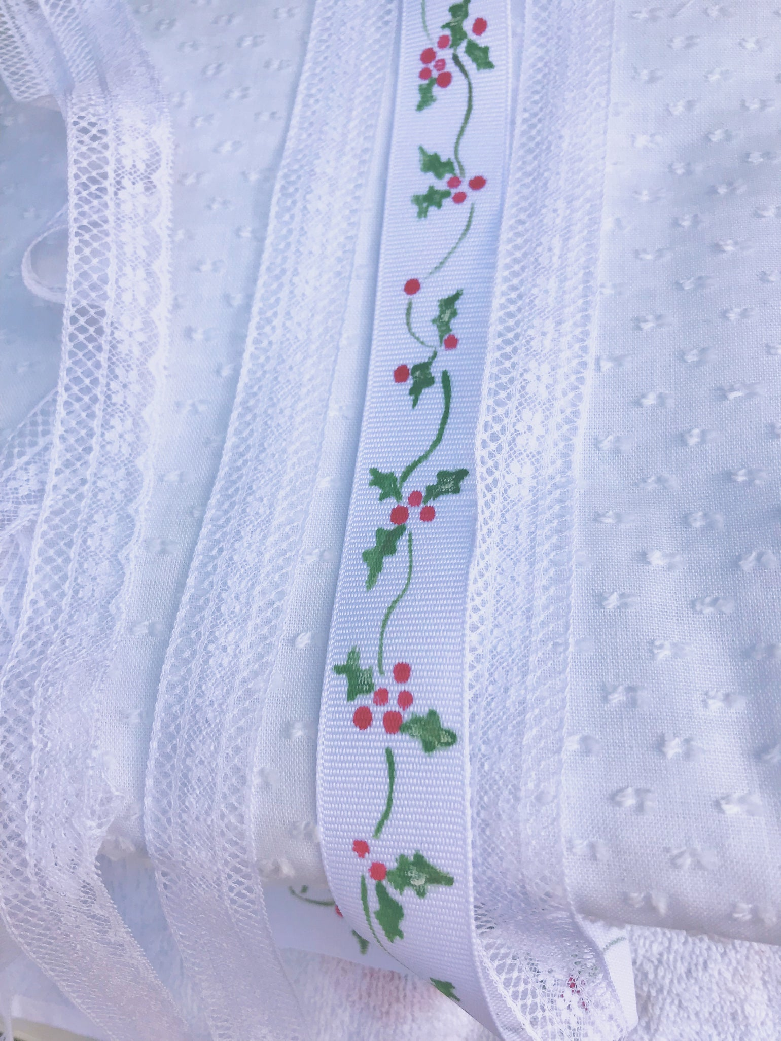 Image of Hand Painted Holly Ribbon Dress