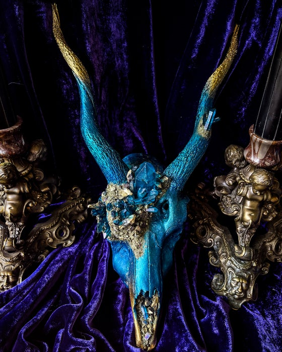 Image of Blue Quartz & Gold - Blackbuck Skull