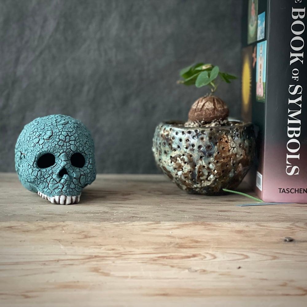 Image of Teal Green Lichen Glaze Ceramic Human Skull