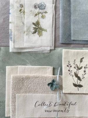 Image of Botanical inspiration pack #2