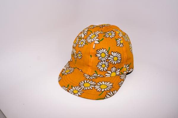 Image of Daisies in orange