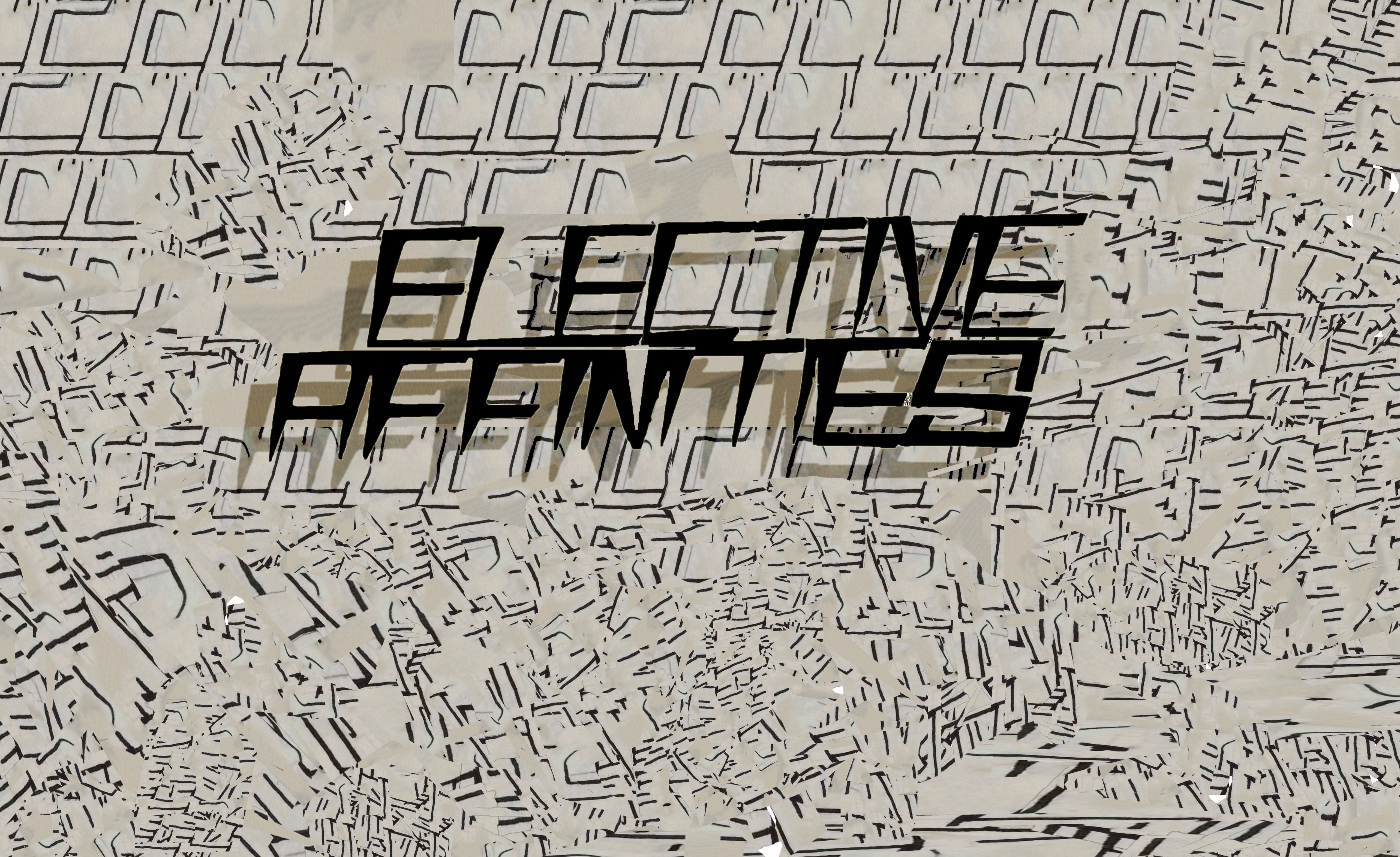 Elective Affinities Corp