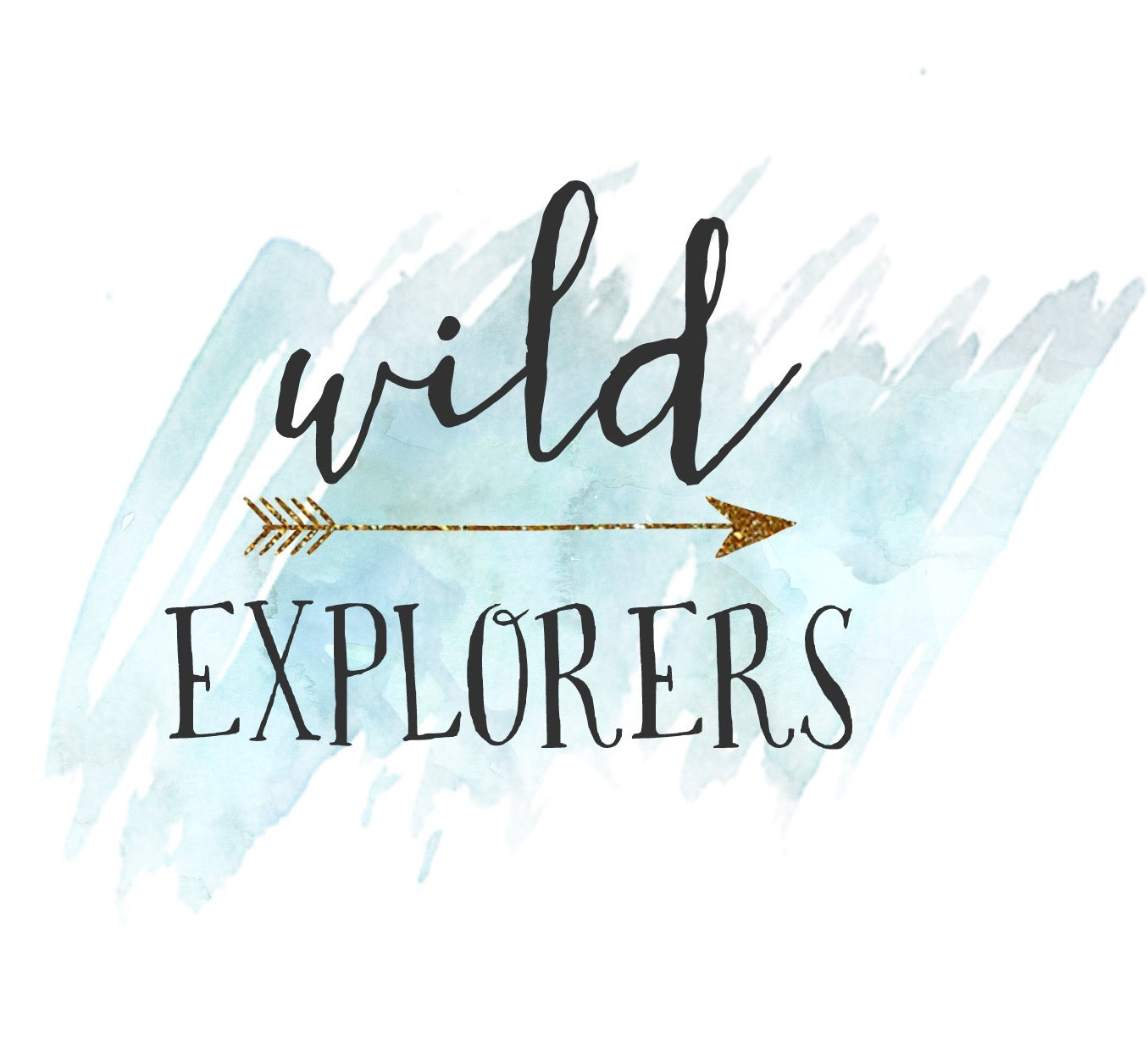 WildExplorers