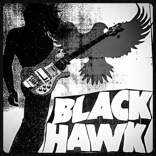 BLACKHAWK AMPLIFIERS