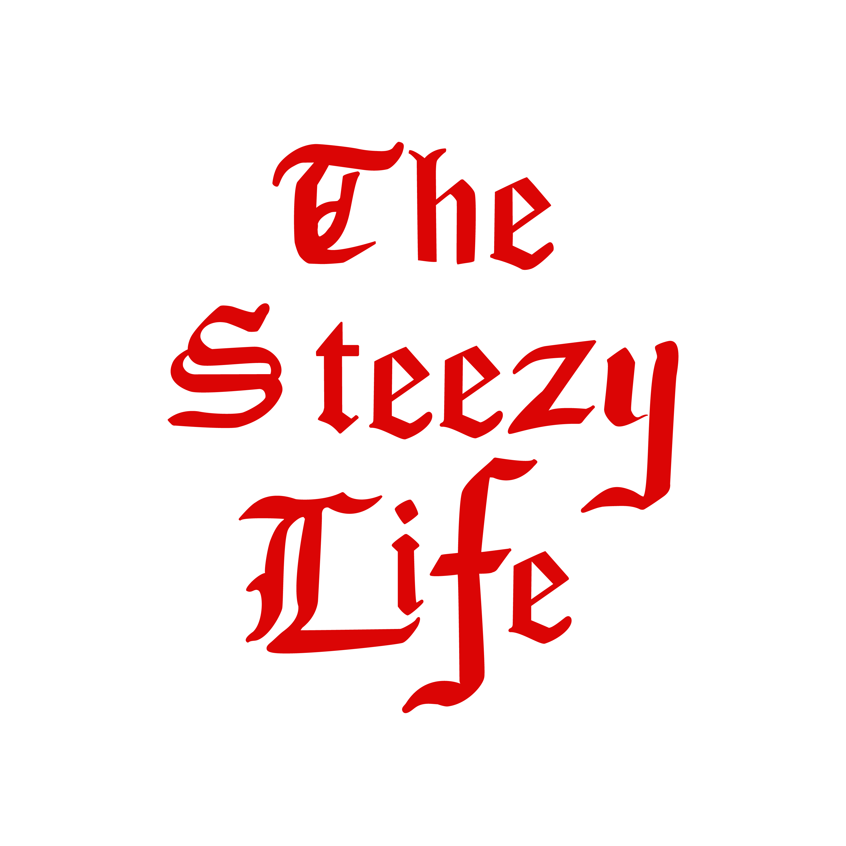 The Steezy Life