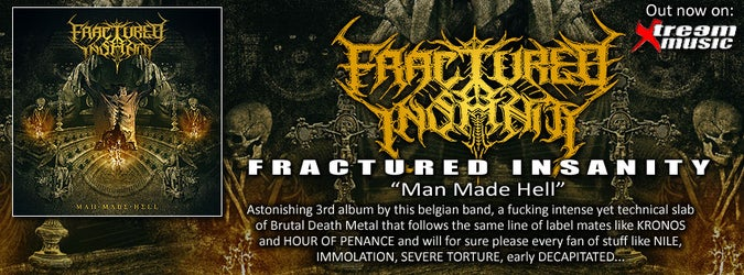 FRACTURED INSANITY