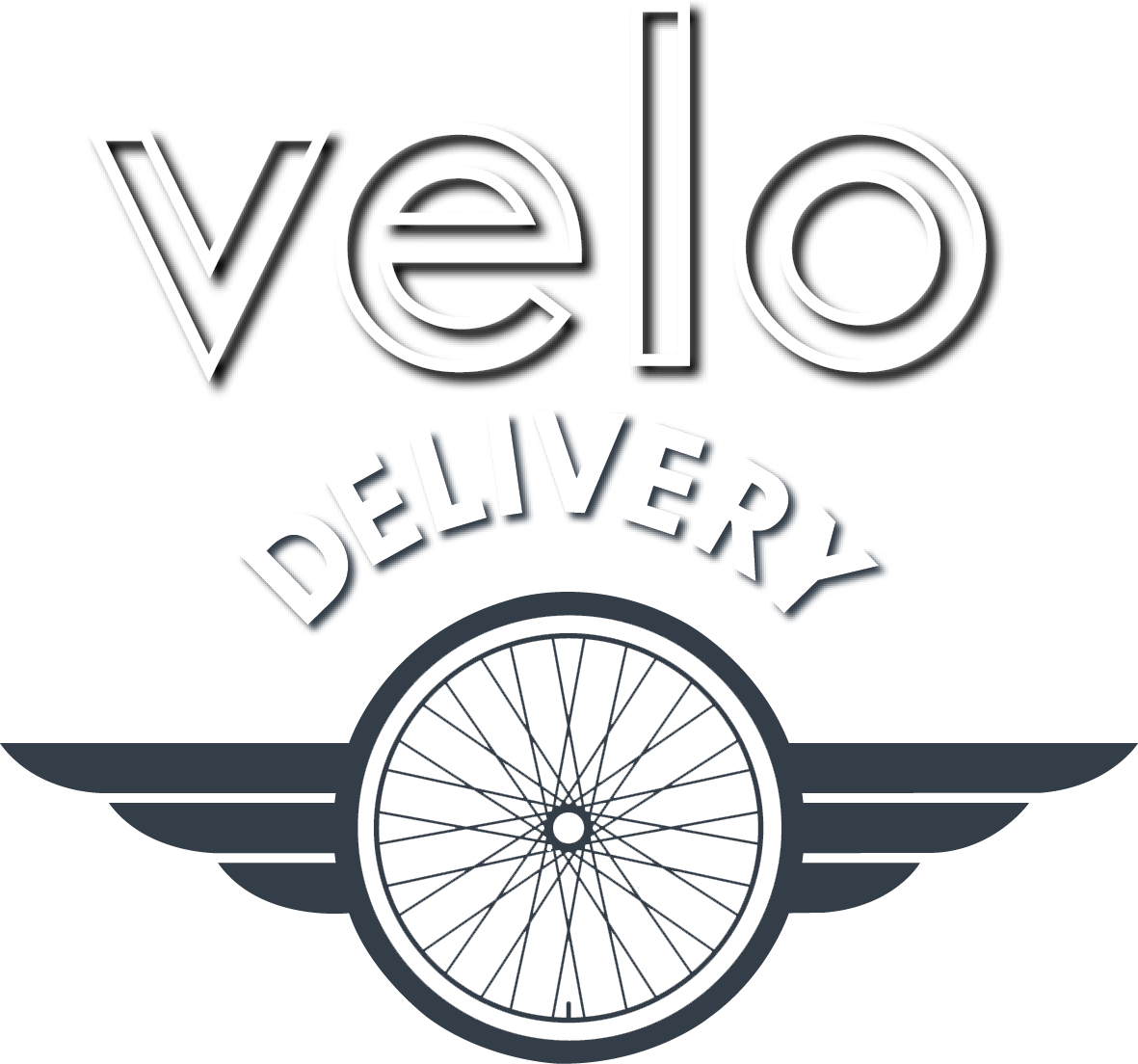 Velo Delivery