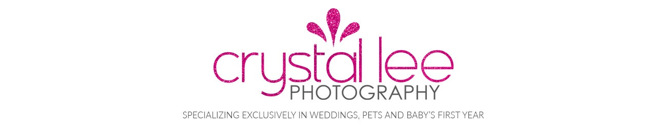 Crystal Lee Photography