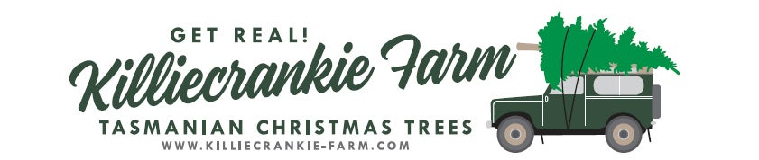Christmas at Killiecrankie Farm