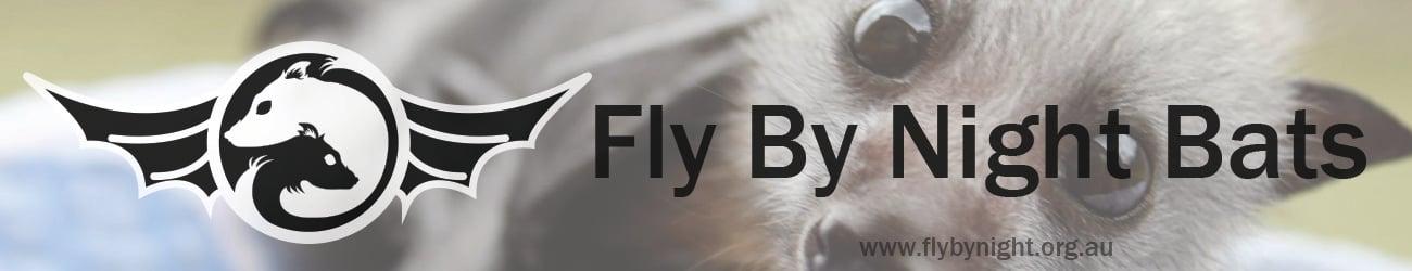 Fly By Night Bats