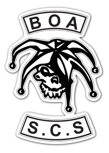 BOA S.C.S