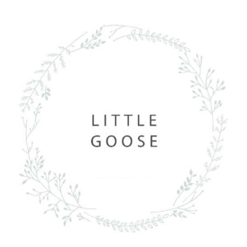 Little Goose Baby Clothing