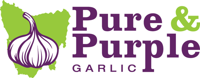 Pure and Purple Garlic