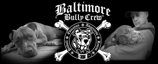 Baltimore Bully Crew