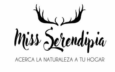 Miss Serendipia