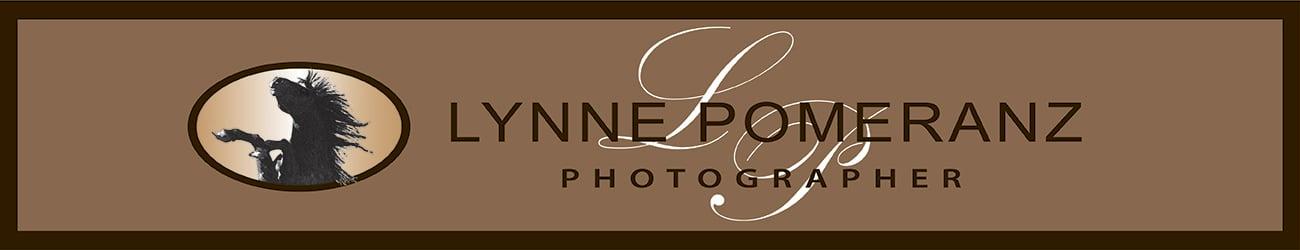 Lynne Pomeranz, Photographer