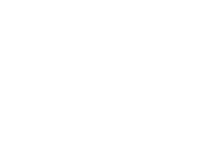 Lady Jane's Revenge Merch