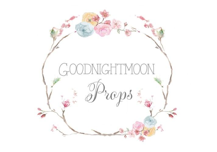 Goodnightmoon Props