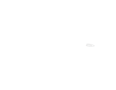 Art from Scars